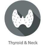 Private Thyroid Neck Lymph Node Ultrasound Scan