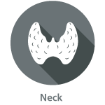 Thyroid_neck_icon1.png